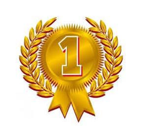 eerste prijs voor website
